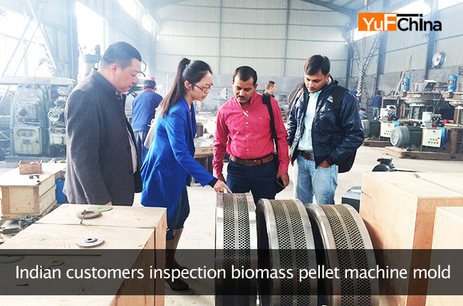 India Customer inspection biomass pellet machine mold
