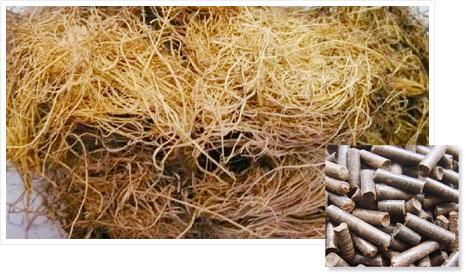 Palm wire