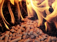 Three Advantages of Palm Shell Biomass Pellets