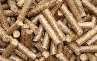 Five Tips Guiding you how to choose Raw Materials in Pellet Making Plant