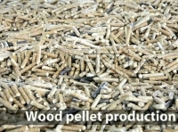 Does Climate Change Can Influence the Output of Biomass Pellet Machine?