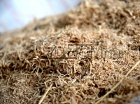 What will be lost in the process of  wood pellet machine?